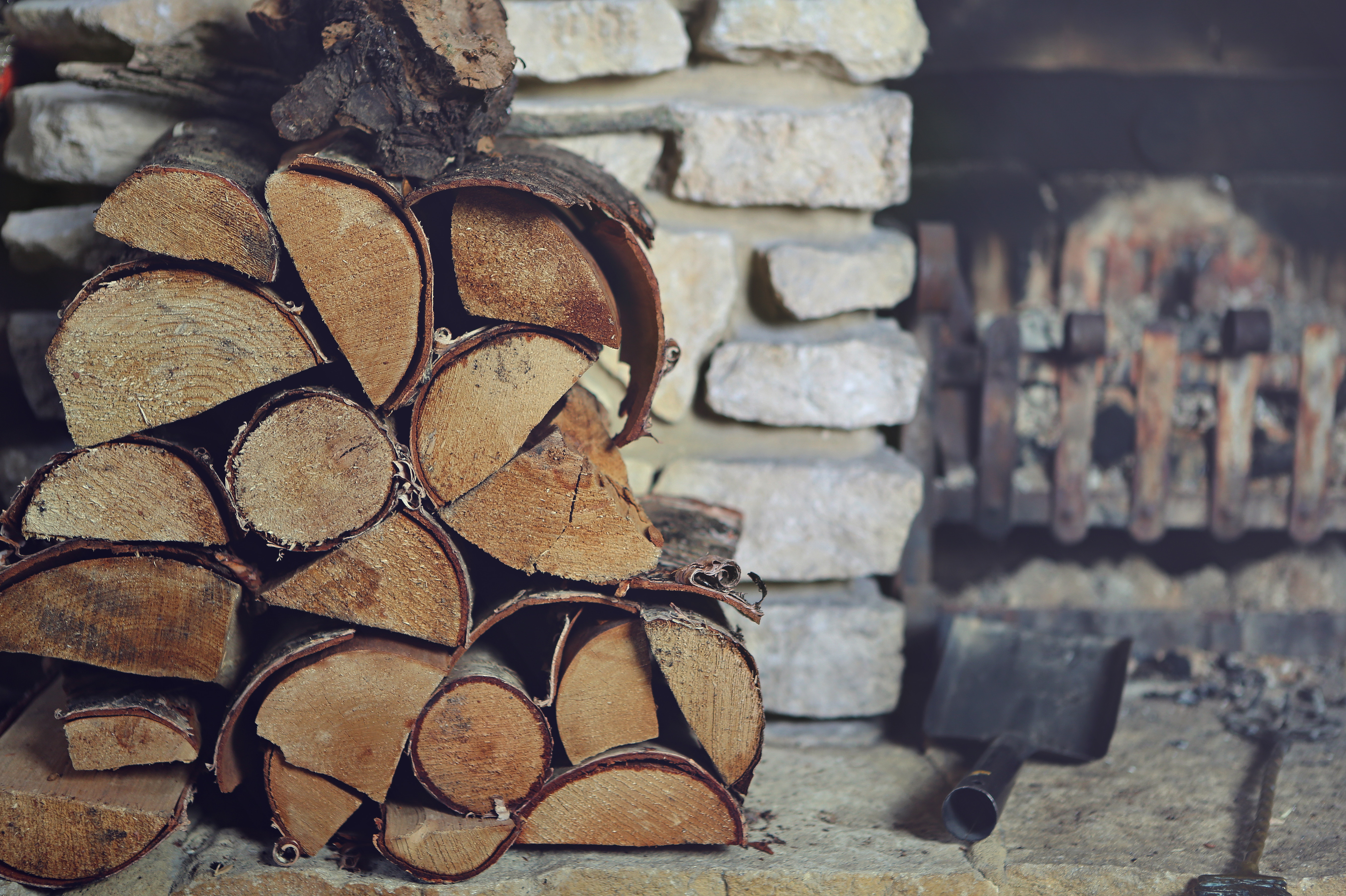 Keep your Wood Pile Pest-Free