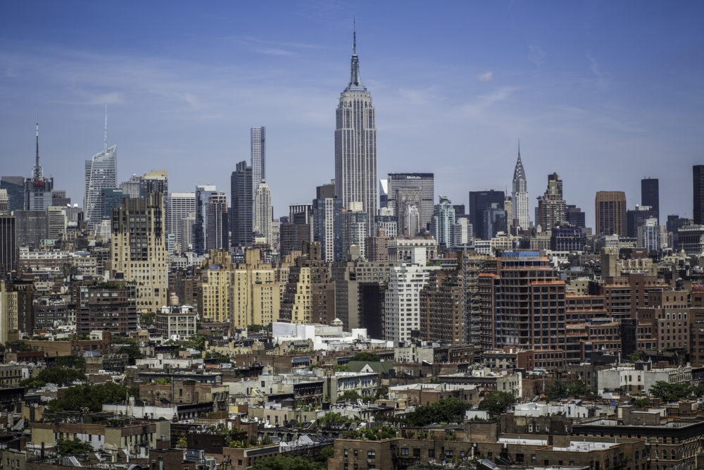 cities vermin infestation